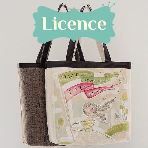 Licence cabotin